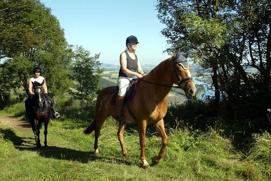 רכיבה על סוסים ביער