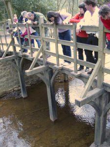 גשר משחק המקלות